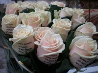 Волшебные розы