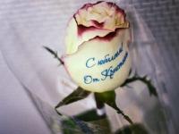 Волшебные розы_6