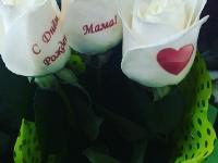 Волшебные розы_8