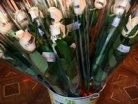 Волшебные розы_9