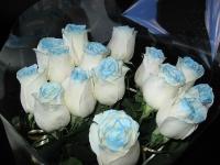 Светящиеся розы в темноте Севастополь