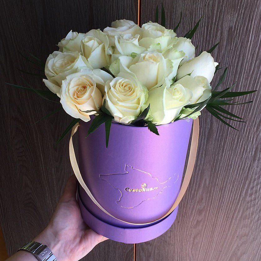White in purple